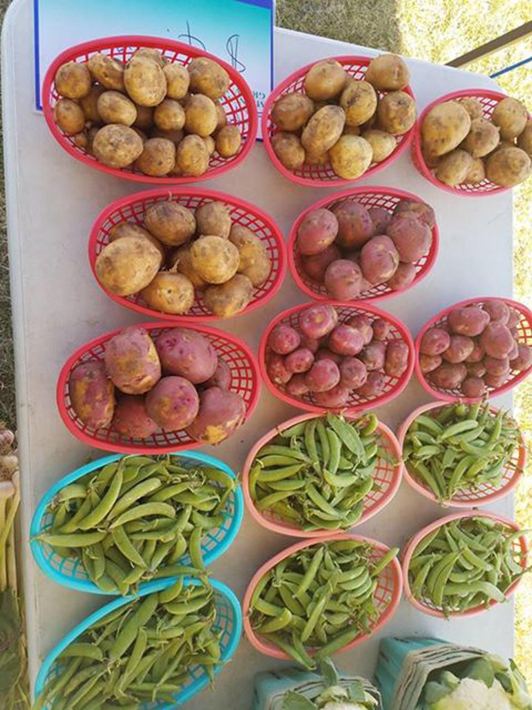 farmers.market.jpg