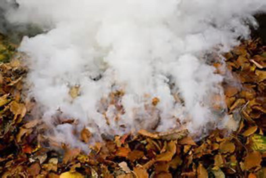 leaf burning.jpg